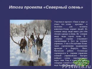 Итоги проекта «Северный олень»Участвуя в проекте «Окно в мир», я узнал, что олен