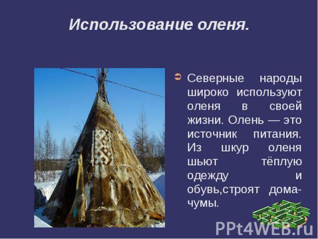 Использование оленя.Северные народы широко используют оленя в своей жизни. Олень — это источник питания. Из шкур оленя шьют тёплую одежду и обувь,строят дома- чумы.