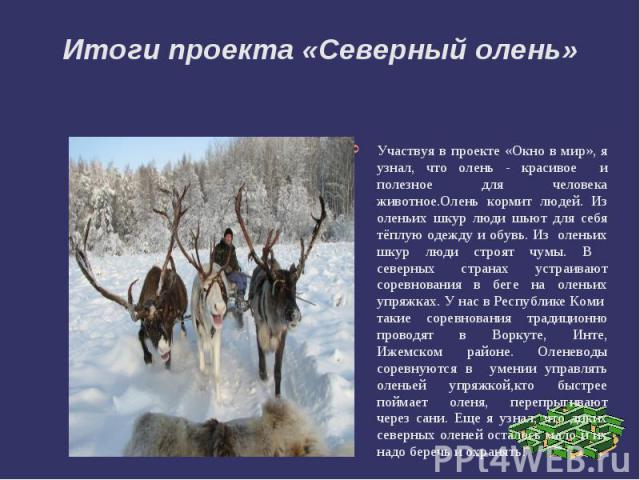 Итоги проекта «Северный олень»Участвуя в проекте «Окно в мир», я узнал, что олень - красивое и полезное для человека животное.Олень кормит людей. Из оленьих шкур люди шьют для себя тёплую одежду и обувь. Из оленьих шкур люди строят чумы. В северных …