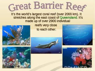 Great Barrier Reef It's the world's largest coral reef (over 2000 km). It stretc