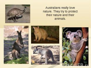 Australians really love nature. They try to protect their nature and their anima
