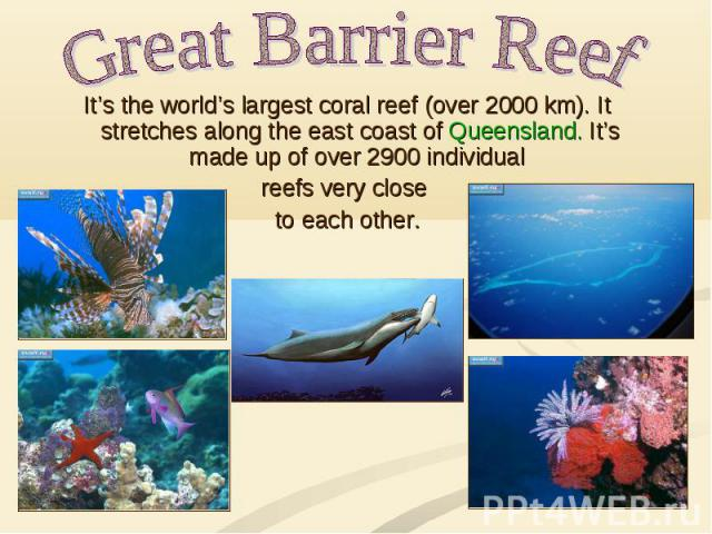 Great Barrier Reef It's the world's largest coral reef (over 2000 km). It stretches along the east coast of Queensland. It's made up of over 2900 individual reefs very close to each other.