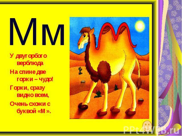 Мм У двугорбого верблюда На спине две горки – чудо! Горки, сразу видно всем, Очень схожи с буквой «М».