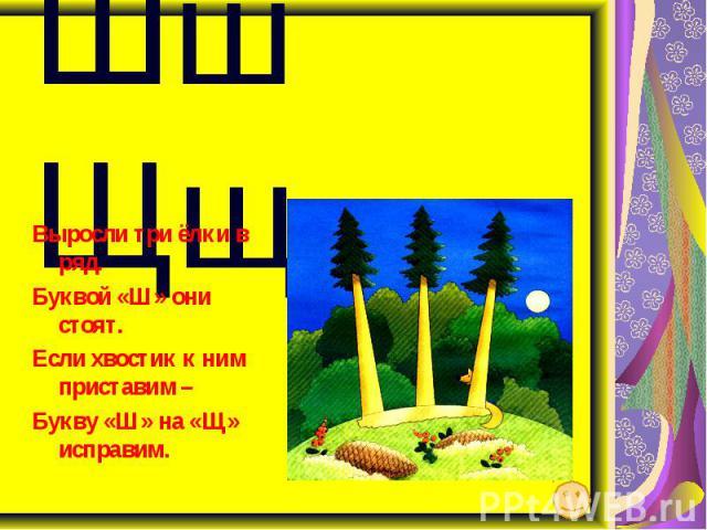 Шш Щщ Выросли три ёлки в ряд. Буквой «Ш» они стоят. Если хвостик к ним приставим – Букву «Ш» на «Щ» исправим.