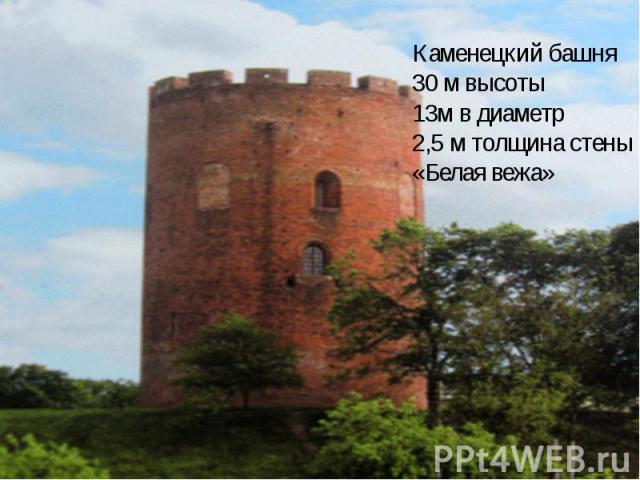 Каменецкий башня 30 м высоты 13м в диаметр 2,5 м толщина стены «Белая вежа»