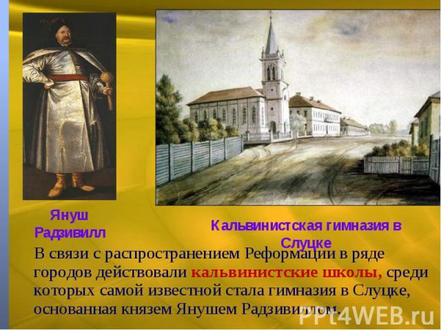 В связи с распространением Реформации в ряде городов действовали кальвинистские школы, среди которых самой известной стала гимназия в Слуцке, основанная князем Янушем Радзивиллом.