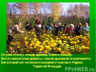 Не убей птичку, посади деревце, помоги слабому- Все это воспитание доброты, тонк