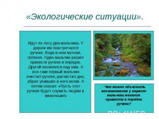 «Экологические ситуации». Идут по лесу два мальчика. У дороги им повстречался ру