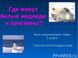 Где живут белые медведи и пингвины? Урок окружающего мира 1 класс Учитель И.Н.Ко