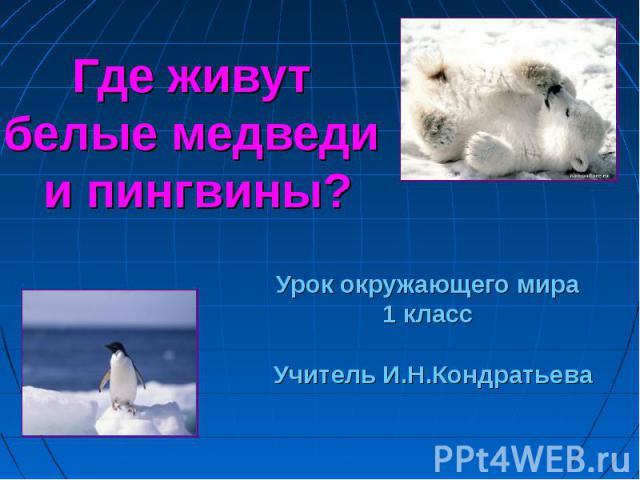 Где живут белые медведи и пингвины? Урок окружающего мира 1 класс Учитель И.Н.Кондратьева