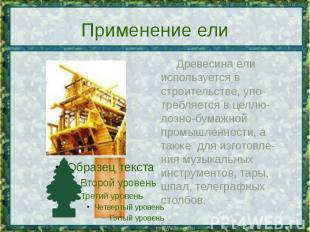 Применение ели Древесина ели используется в строительстве, упо-требляется в целл