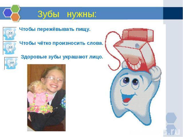 Зубы нужны: ч Чтобы пережёвывать пищу. Чтобы чётко произносить слова. Здоровые зубы украшают лицо.