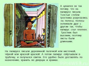 А ценился он так потому, что на папирусе писали. Толстые стебли тростника разрез