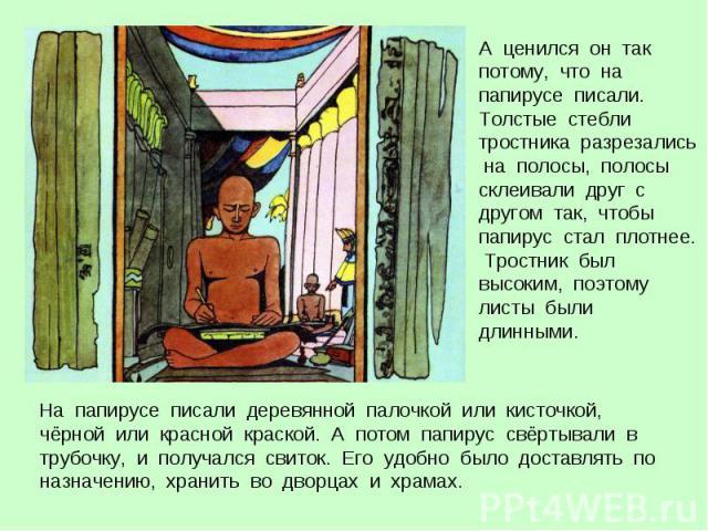 А ценился он так потому, что на папирусе писали. Толстые стебли тростника разрезались на полосы, полосы склеивали друг с другом так, чтобы папирус стал плотнее. Тростник был высоким, поэтому листы были длинными. На папирусе писали деревянной палочко…