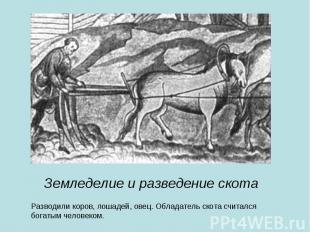 Земледелие и разведение скота Разводили коров, лошадей, овец. Обладатель скота с