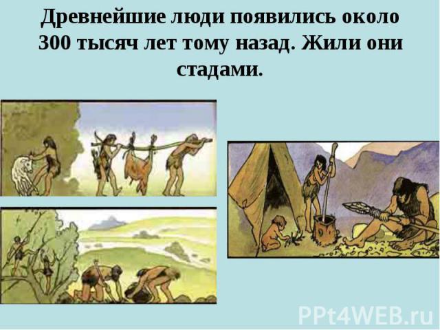 Древнейшие люди появились около 300 тысяч лет тому назад. Жили они стадами.