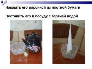 Накрыть его воронкой из плотной бумаги Поставить его в посуду с горячей водой