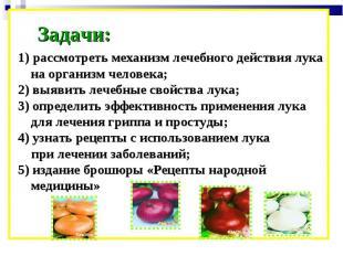 Задачи: 1) рассмотреть механизм лечебного действия лука на организм человека; 2)