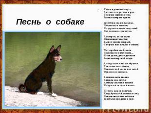 Песнь о собаке Утром в ржаном закуте, Где златятся рогожи в ряд, Семерых ощенила