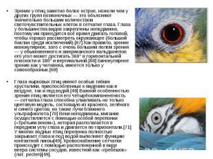 Зрение у птиц заметно более острое, нежели чем у других групп позвоночных — это