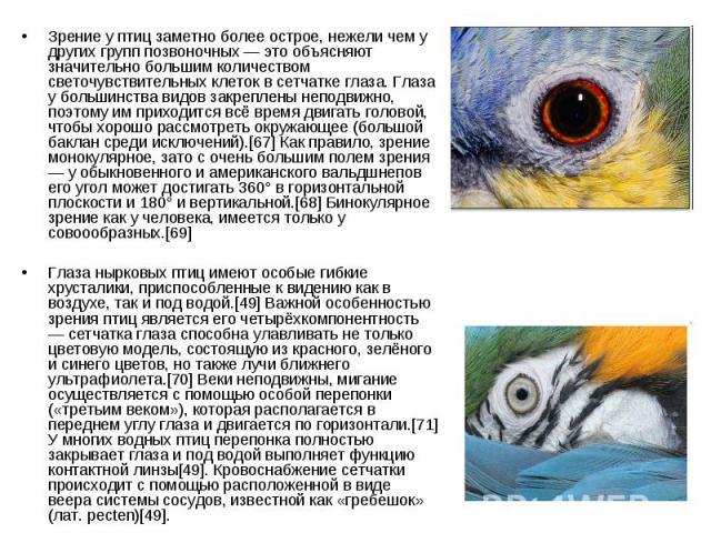 Зрение у птиц заметно более острое, нежели чем у других групп позвоночных — это объясняют значительно большим количеством светочувствительных клеток в сетчатке глаза. Глаза у большинства видов закреплены неподвижно, поэтому им приходится всё время д…