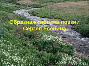 Образная система поэзии Сергея Есенина
