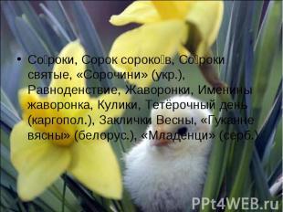 Со роки, Сорок сороко в, Со роки святые, «Сорочини» (укр.), Равноденствие, Жавор