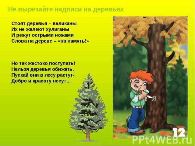 Стоят деревья – великаны Их не жалеют хулиганы И режут острыми ножами Слова на дереве – «на память!» Но так жестоко поступать! Нельзя деревья обижать. Пускай они в лесу растут- Добро и красоту несут…