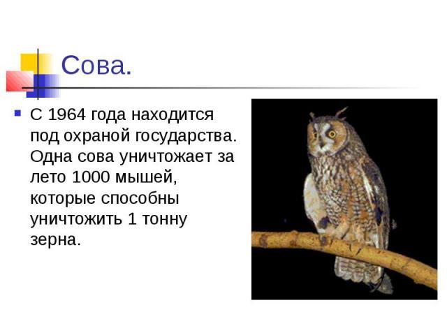 Сова.С 1964 года находится под охраной государства. Одна сова уничтожает за лето 1000 мышей, которые способны уничтожить 1 тонну зерна.