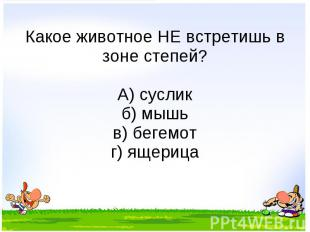 Какое животное НЕ встретишь в зоне степей? А) суслик б) мышь в) бегемот г) ящери