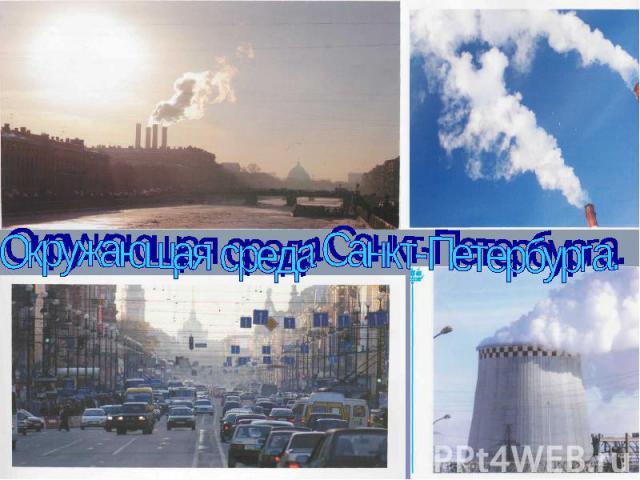 Окружающая среда Санкт-Петербурга