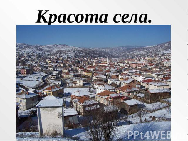 Красота села.