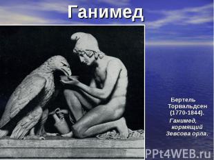 Ганимед Бертель Торвальдсен (1770-1844). Ганимед, кормящий Зевсова орла.