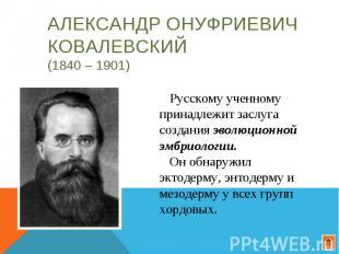 Александр Онуфриевич Ковалевский (1840 – 1901) Русскому ученному принадлежит зас