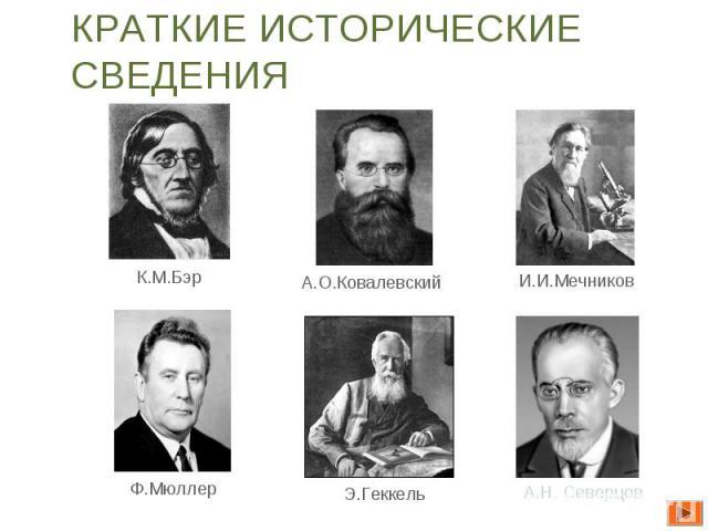 Краткие исторические сведения