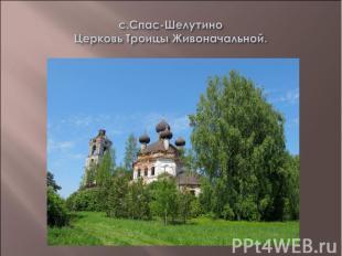 с.Спас-Шелутино Церковь Троицы Живоначальной.