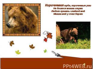 Коричневая шуба, коричневые уши Не боится мишка стужи Любит кушать сладкий мед М