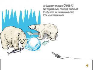 А бывает мишка белый Он огромный, ловкий, смелый, Рыбу ест, живет во льдах, Где