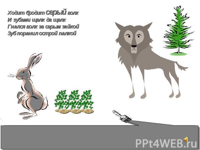 Ходит бродит серый волк И зубами щелк да щелк Гнался волк за серым зайкой Зуб поранил острой палкой