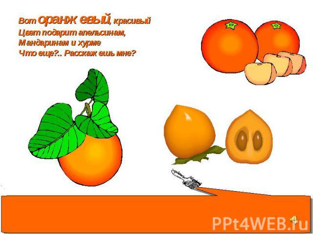Вот оранжевый, красивый Цвет подарит апельсинам, Мандаринам и хурме Что еще?.. Расскажешь мне?