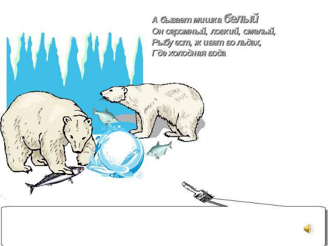 А бывает мишка белый Он огромный, ловкий, смелый, Рыбу ест, живет во льдах, Где холодная вода
