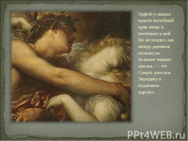 Орфей услышал издали жалобный крик жены и поспешил к ней. Но он увидел, как между деревьев мелькнули большие черные крылья, — это Смерть уносила Эвридику в подземное царство.