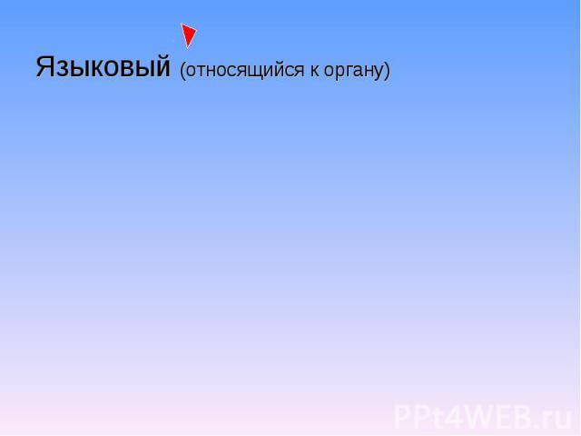 Языковый (относящийся к органу)