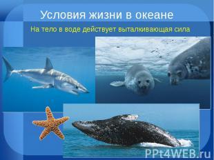 Условия жизни в океане На тело в воде действует выталкивающая сила