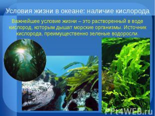 Условия жизни в океане: наличие кислорода Важнейшее условие жизни – это растворе