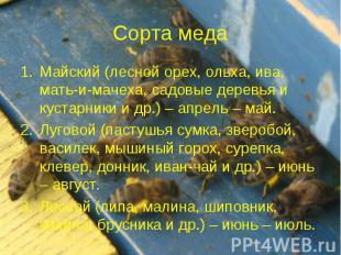Сорта меда Майский (лесной орех, ольха, ива, мать-и-мачеха, садовые деревья и ку