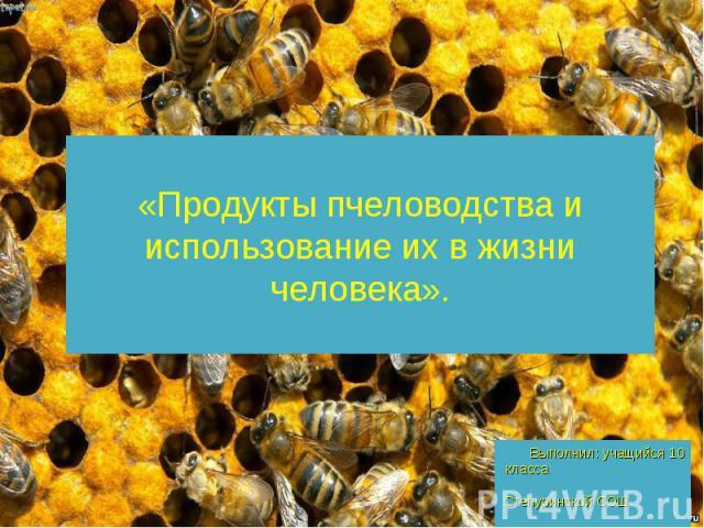 «Продукты пчеловодства и использование их в жизни человека». Выполнил: учащийся 10 класса Степуринской СОШ Шамсудинов Шамиль Руководитель: Золотова М. А.