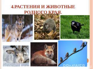 4.Растения и животные родного края.
