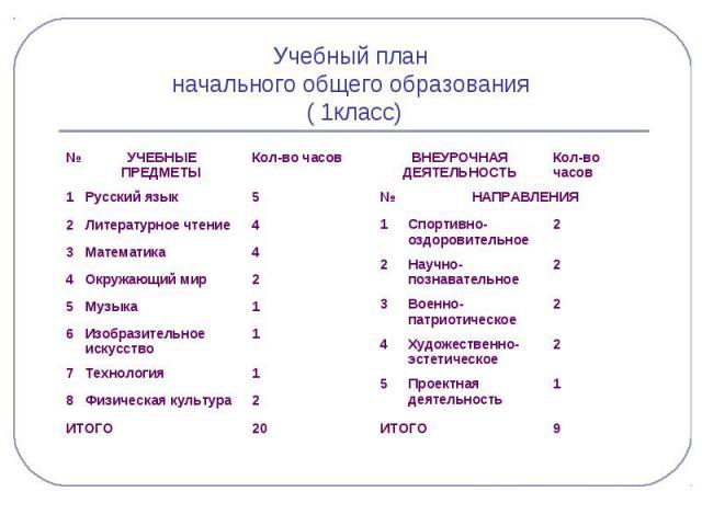 Учебный план начального общего образования ( 1класс)