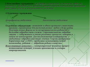 3.Межлинейное скрещивание- (аутбридинг) направленно на получение эффекта гетероз